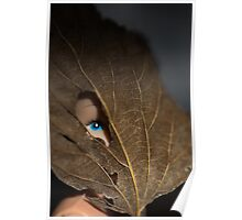Blue eyed nature girl Poster