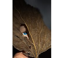Blue eyed nature girl Photographic Print