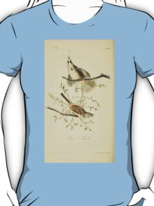 James Audubon Vector Rebuild - The Birds of America - From Drawings Made in the United States and Their Territories V 1-7 1840 - Song Finch T-Shirt