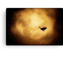 Flying V2. Canvas Print