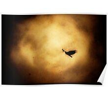 Flying V2. Poster