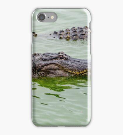 Alligators iPhone Case/Skin