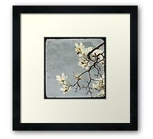 A bit of Spring #1 Framed Print