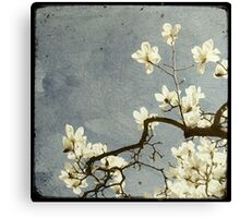 A bit of Spring #2 Canvas Print