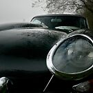 E Type, Up Close by Matthew Walters