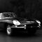 E Type, Mono by Matthew Walters