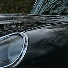 E Type, Power Bulge by Matthew Walters