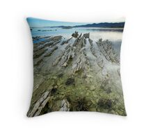 Limestone Ribs Throw Pillow