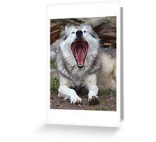 Wolf Yawning Greeting Card