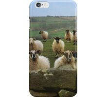 They Must Think They're Getting Fed iPhone Case/Skin