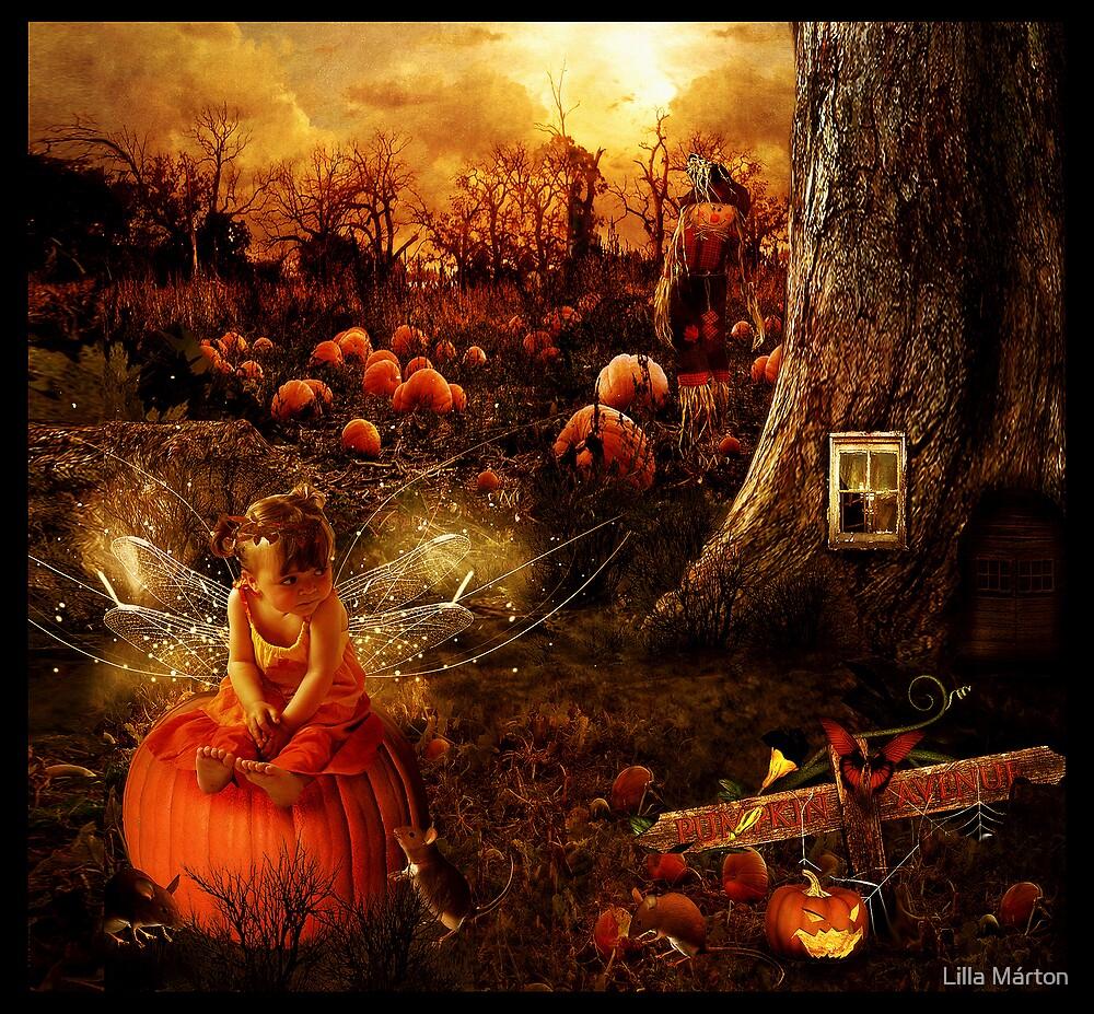 Halloween fairy by Lilla Márton