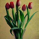 five tulips by Angel Warda