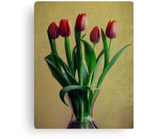 five tulips Canvas Print
