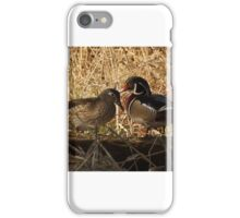 Wood ducks chatting iPhone Case/Skin