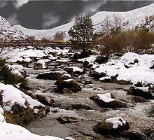Below the Snowfields. by Allan McKean