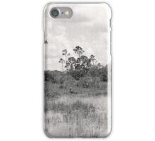 Pahayokee Overlook Vista iPhone Case/Skin