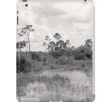 Pahayokee Overlook Vista iPad Case/Skin