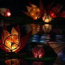 Diwali by Paul O'Neill
