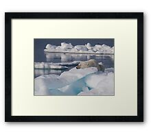 An Ice Rest Framed Print