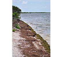 Canavarel National Seashore Photographic Print