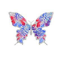 Red, White, and Blue Watercolor Butterfly Photographic Print