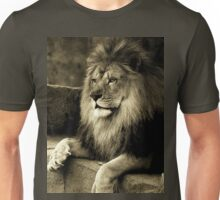 Hall of the mountain king Unisex T-Shirt