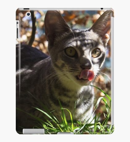 Tali iPad Case/Skin