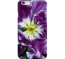 Purple Parrot Tulips of Keukenhof iPhone Case/Skin