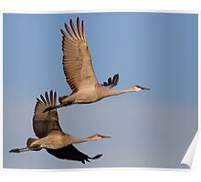 A Loving Couple in Flight Poster