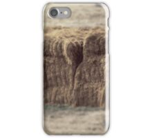Hay bale in field iPhone Case/Skin