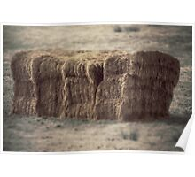 Hay bale in field Poster
