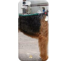 the Airedales iPhone Case/Skin