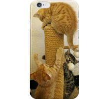 Here We Go Round The Scratchy Post iPhone Case/Skin