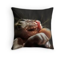 Baby Possum Throw Pillow