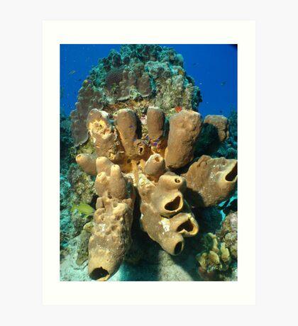 Coral Head Art Print