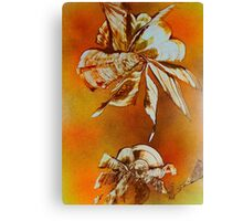 Flora Insecta Canvas Print