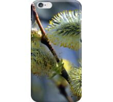 Pussy Willow........... iPhone Case/Skin