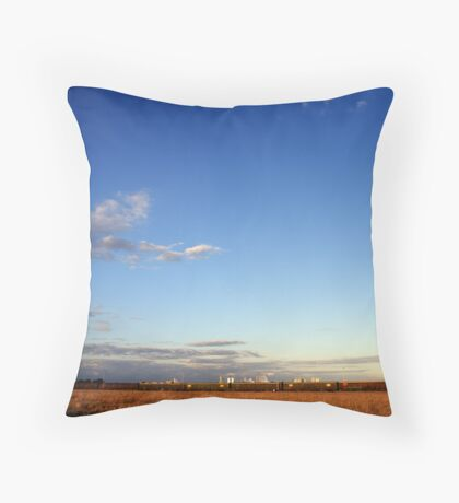 Under the Southern Sky Throw Pillow