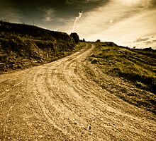 Camino Rural by Felix M. Cobos