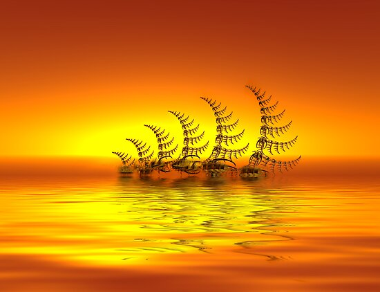 Sailing Into The Sunset by SharonD