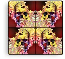 The four corners of my conscience mind Canvas Print