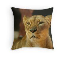 Lioness 2 Throw Pillow