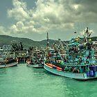 Thai Fishing  by Rob Hawkins