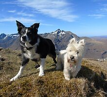 Calley and Murphy by jmnicolson