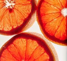Citrus by MarisaRossPhoto