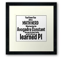 Math Nerd Framed Print