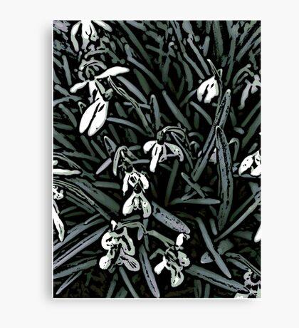 Snowdrop  woodcut Canvas Print
