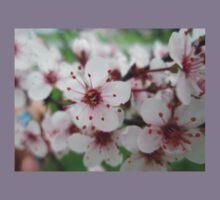 Crabapple Blossoms Kids Clothes