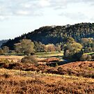 Autumn in Hutton-Le-Hole by Sarah Couzens