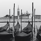 Gondolas of San Marco by zep wernbacher-dundo